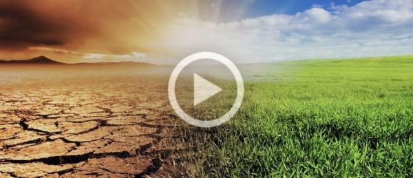 Business English News 43 Lesson - Climate Change